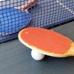 Ping-pong à Saint Georges du Vièvre